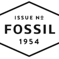 Fossil-Deals-Ebay