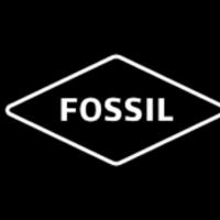 DiscountFossil